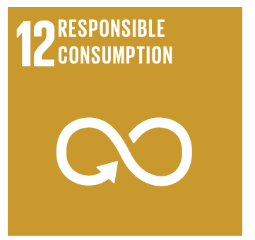 Malengo_Found_Global_Goals_Icons_r2_c6
