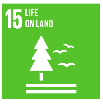 Malengo_Found_Global_Goals_Icons_r3_c3