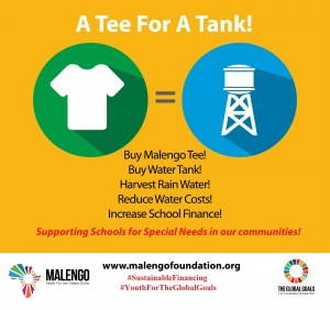 Malengo_Foundation_Youth_for_the_global_goals1